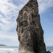 Olympic National Park - Rugged Coast